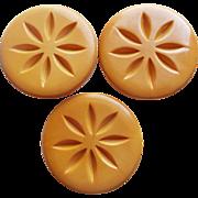 "Huge 2"" BAKELITE Carved Buttons - Amber Butterscotch Color"