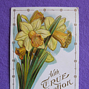 Gorgeous DAFFODIL Antique Estate Postcard