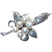 Gorgeous Sterling & Cultured Pearl Vintage Brooch