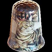 Vintage Tabby Cat Porcelain Thimble