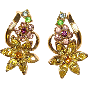 Gorgeous CORO Signed Vintage Multi Color Rhinestone Clip Earrings