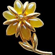 Prystal Bakelite Flower Vintage Brooch