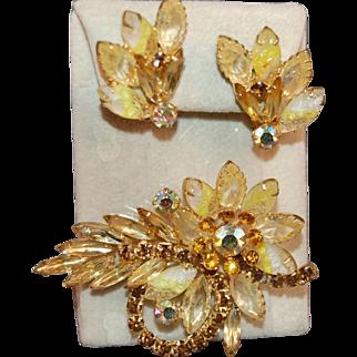 Juliana DeLizza & Elster Molded Givre Stones & Rhinestone Gorgeous Brooch & Earring Set
