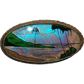 Art Deco Iridescent Butterfly Wings Tropical Scenic Brooch!