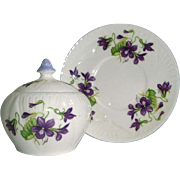 Shelley England Bone China Jam Honey Mustard Jar with Violets