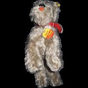 "Steiff Vintage 8"" Tessie Schnauzer Dog Free P&I US Buyers"