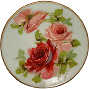 Victorian Mt Washington Hand Painted ROSES Satin Glass Plate ~ 10""