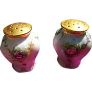 Vintage Lovely Hand Painted Rose Salt & Pepper Shaker Set
