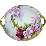 "D'Arcy Studio Pickard Competitor Hand Painted Haviland Cake Plate Dish,Artist Signed,""Sih"""