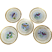 Vintage Dresden Germany US Zone Hand Painted Bird  Plate Set