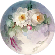 Limoges Hand Painted White  Rose  Plate