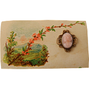 Antique cameo pin on card