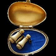 French souvenir stanhope binoculars in hand painted box