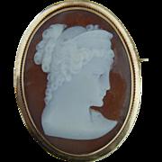Gorgeous antique cameo pendant/pin