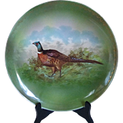 "Antique O&E G Royal Austria Porcelain Game Bird Pheasant Plate Platter 12.5"""