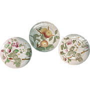 3 majolica French St Clement plates raspberries and grapes-hand painted