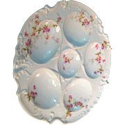 Theodore Haviland  Oyster Plate Decorated with Pink Flowers