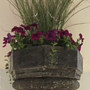 Cast Iron Victorian Planter