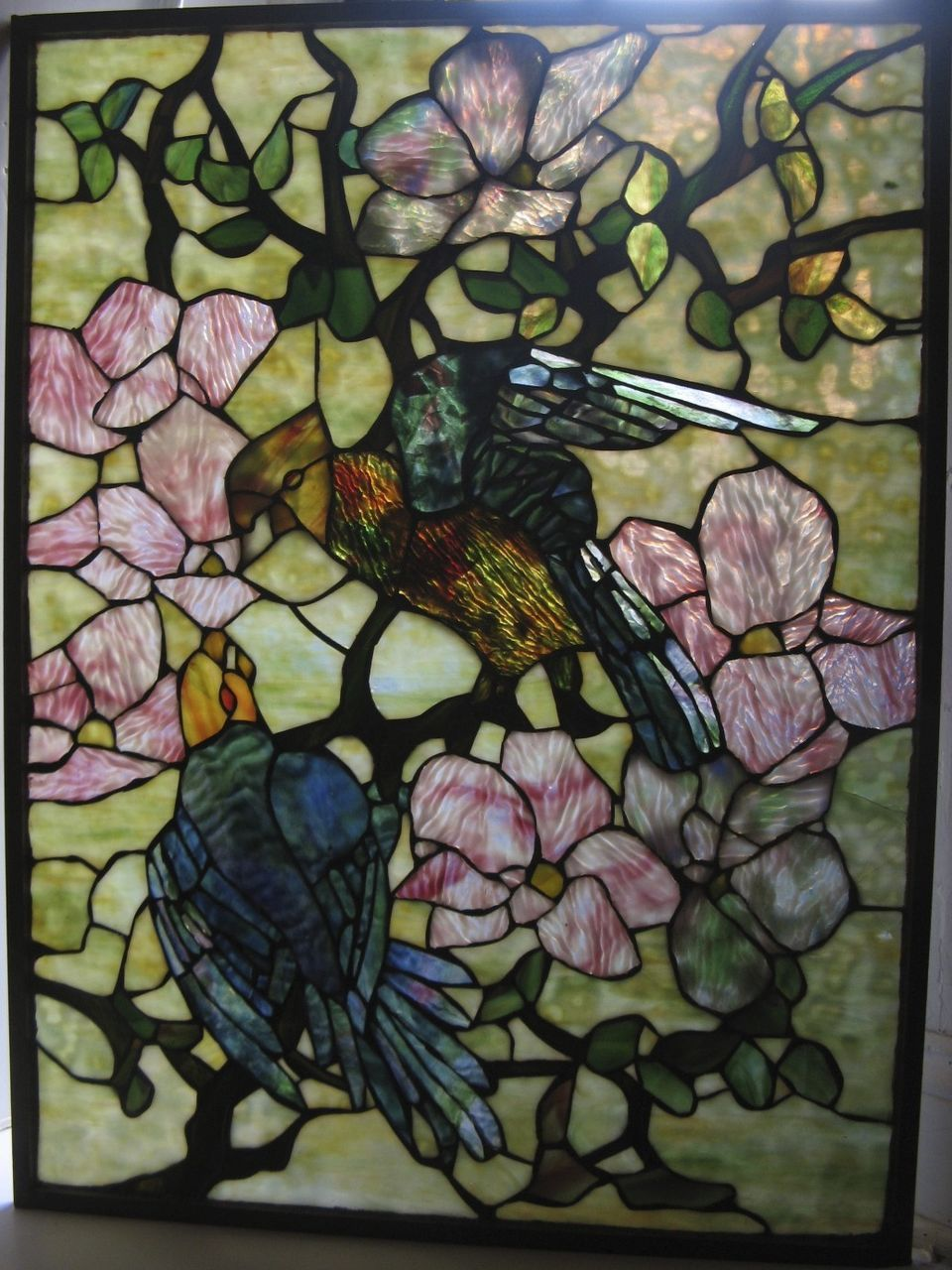 Tiffany Stained Glass : Tiffany style window parrot stained glass from blacktulip
