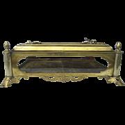 Table Top 19th Century Display Case Box  Vitrine