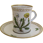 "Vintage 1970's Porcelain hand painted Furstenberg tall Cup and Saucer ""Handpainted IN DENMARK Dandelion Latin Botanical Taraxacum"