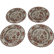 "4 x Vintage Spode India Indian Tree Rust Plates 10.25"" Dinner"