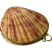 Natural Pecten Bi-Valved Seashell Hinged Coin Purse-Pill Box, 2 1/4""