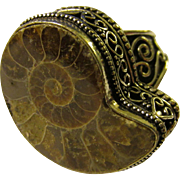 Fossilized Ammonite Finger Ring Set in Ornate Silver Tone Metallic Setting, Size 10