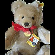 Vintage Teddy Bear  Steiff
