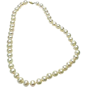 """10 mm Stunning Cultured South Sea Pearls Necklace 18"""" Length"""