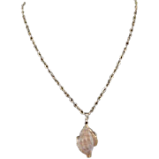 Seashell with Gold Trim on Chain Necklace