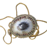 Seashell on Goldtone Chain Necklace