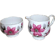Royal Stafford Bone China Mini Cream and Sugar Evesham Pattern