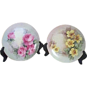 Pair of Hand Painted Floral Plates