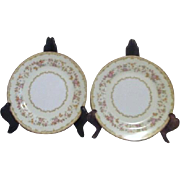 Set of 2 Columbine Pattern  Noritake Salad Plates