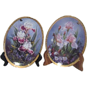 Pair of Rainbow of Irises Oval Gold Trimmed Decorator Plates