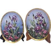 Pair of Rainbow of Irises Oval Gold Trimmed Decorator Plates by Sharon Rickert