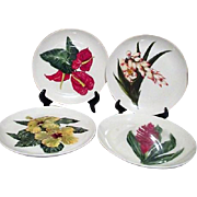 Santa Anita Flowers of Hawaii Set of 4 Dinner Plates