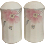 Mikasa Maxima Tremont Pattern Salt and Pepper Shakers