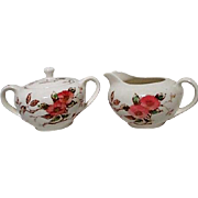 Nasco Springtime Pattern Cream and Sugar
