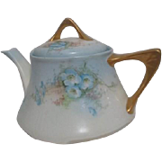 Bavarian Tea Pot with Blue Flowers, Gold Trim by Z.S. & C. Company