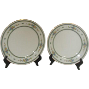 Noritake Amenity Pattern 2 Dinner Plates