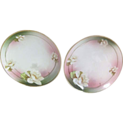 Two hand Decorated Dessert Plates from Austria