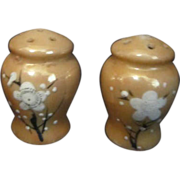 Japanese Small Ceramic Salt & Pepper Shaker Set