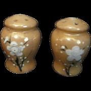 Japanese Small Ceramic Salt & Pepper Shaker Set