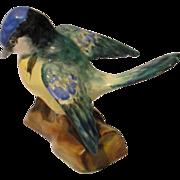 Crown Staffordshire Porcelain Bird Tom Tit