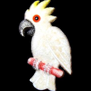 Plastic Cockatoo Bird Pin