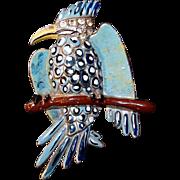 Coro Gessmann Parrit Bird Pin on Branch Blue Polka Dot Enamel Rhinestone Head 1938