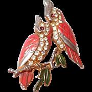 Cockatoo Love Bird Pair Enamel and Pave Rhinestone Pin