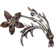 Silver Thistle Flower Pin